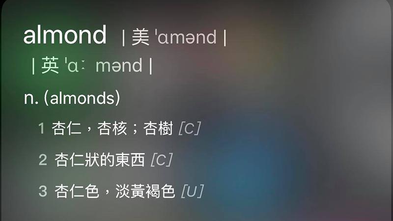 iOS 內建辭典 繁體
