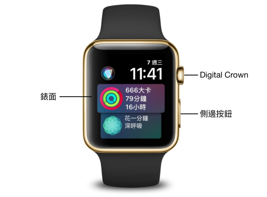 認識 Apple Watch 正面