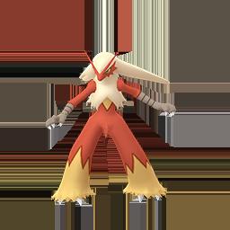 火焰雞 - Male