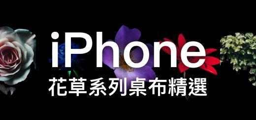 iPhone X 桌布、iPhone 桌布、花草桌布